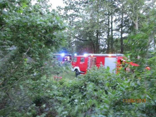 Brand eines Holzstoßes am 11.06.2019