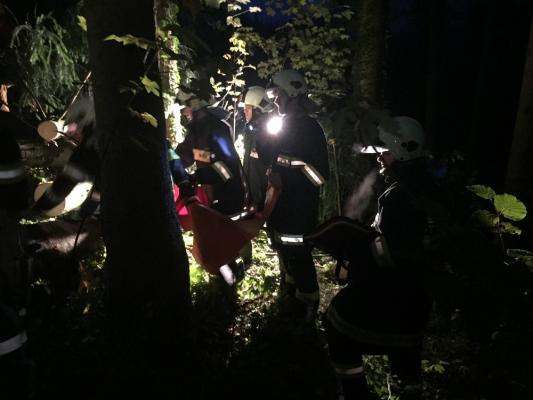 Übung Forstunfall mit RK Mondsee am 12.09.2017